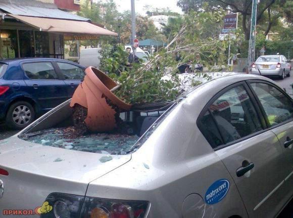 auto-crash-290309-39