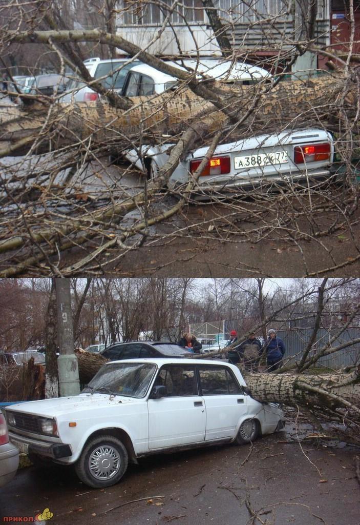 auto-crash-290309-45