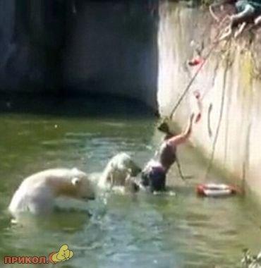 polar-bear-attacks-woman-04