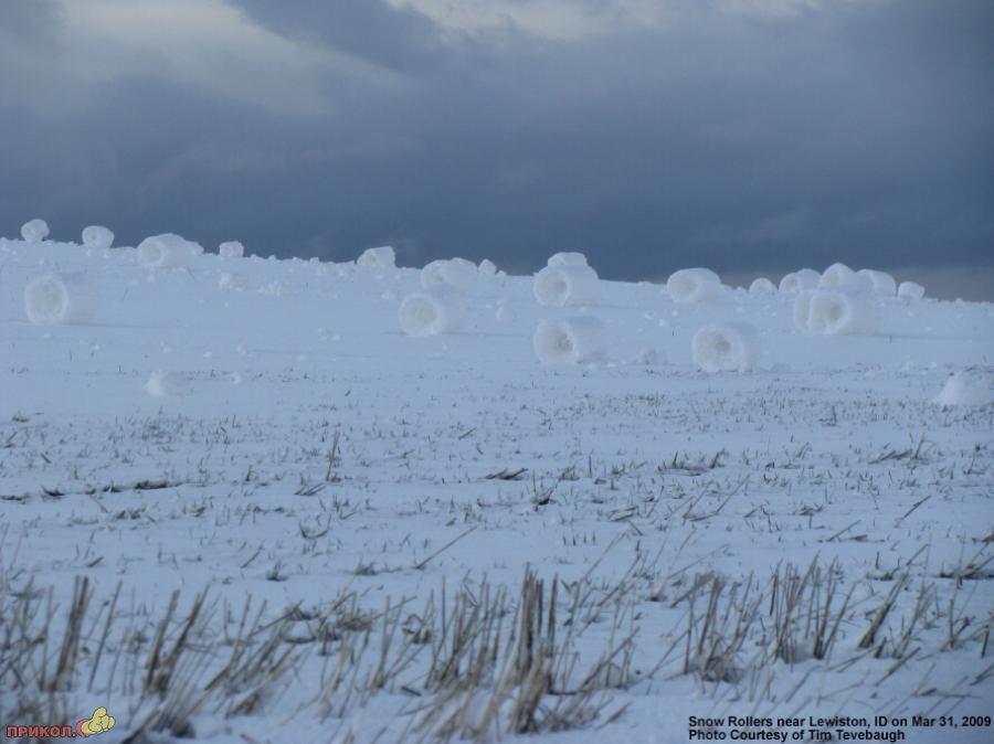 snow-rolls-06