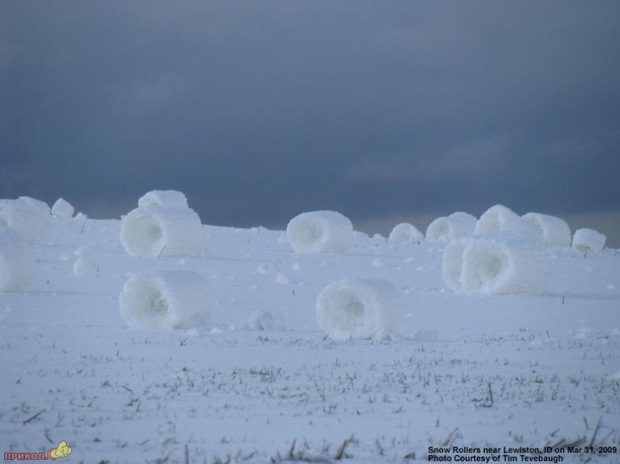 snow-rolls-07