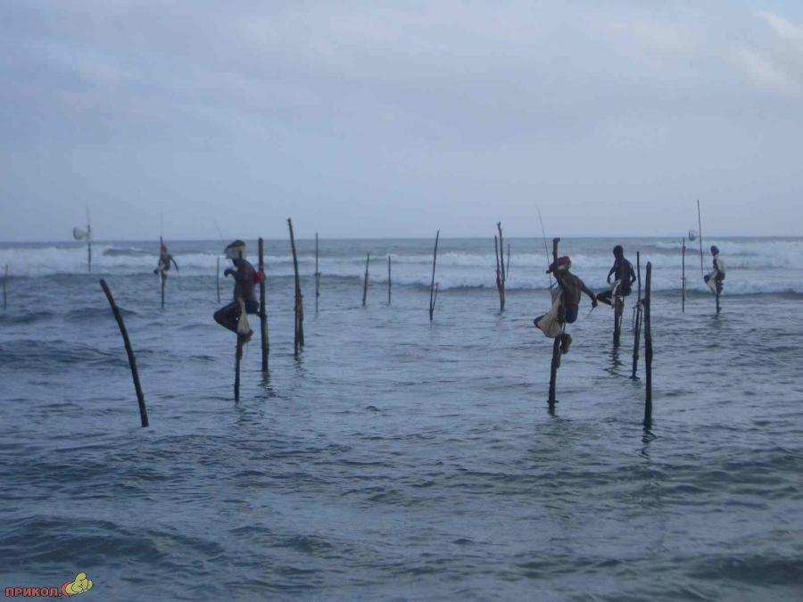sri-lanka-fishing-01