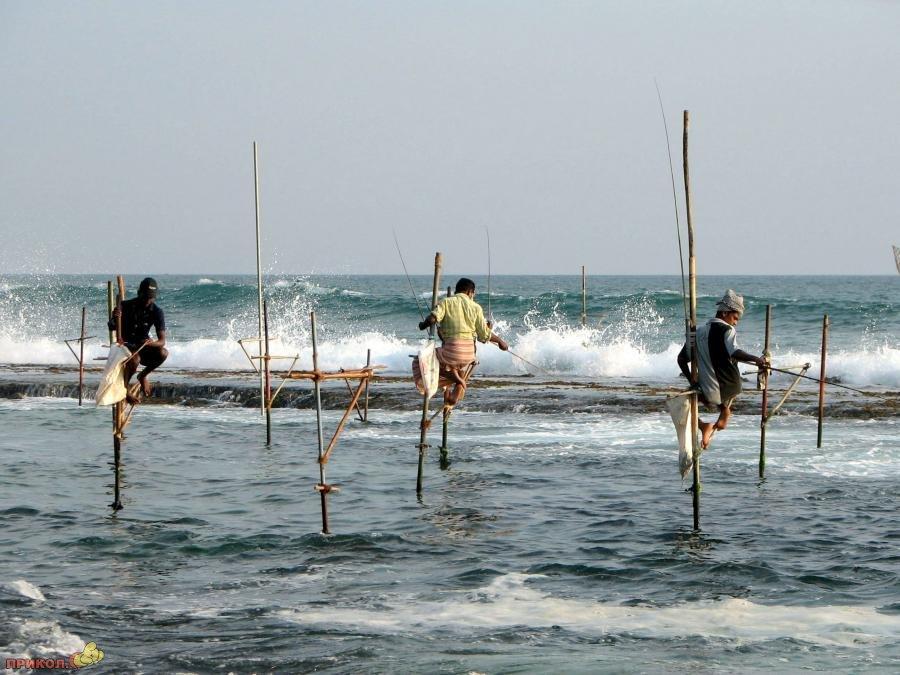sri-lanka-fishing-02