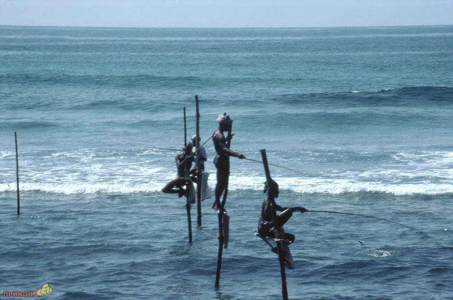 sri-lanka-fishing-04