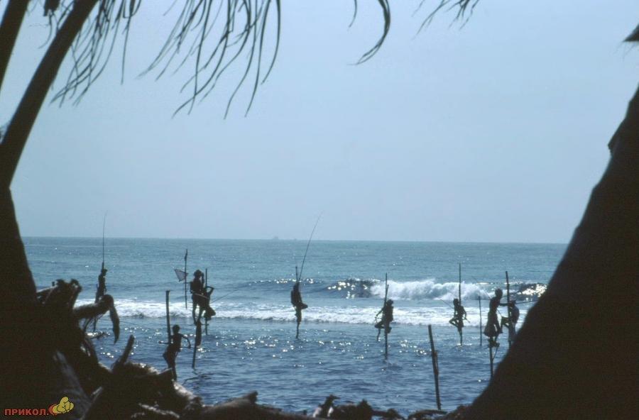 sri-lanka-fishing-05
