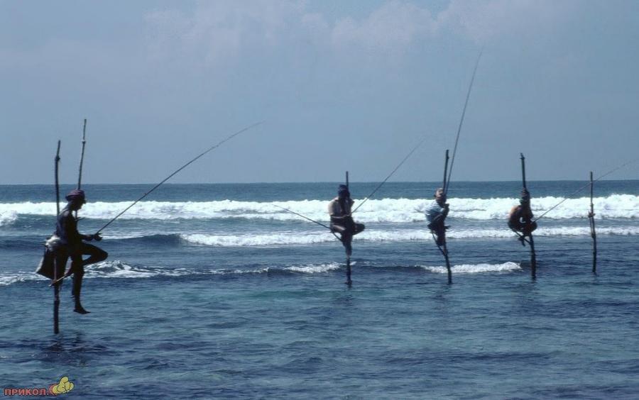 sri-lanka-fishing-06