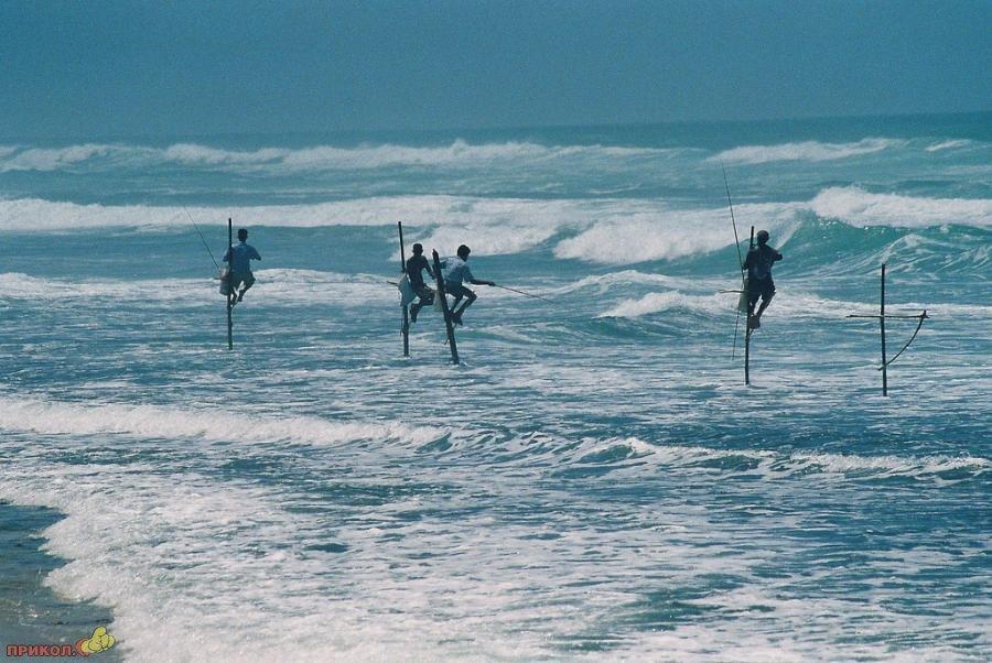 sri-lanka-fishing-07