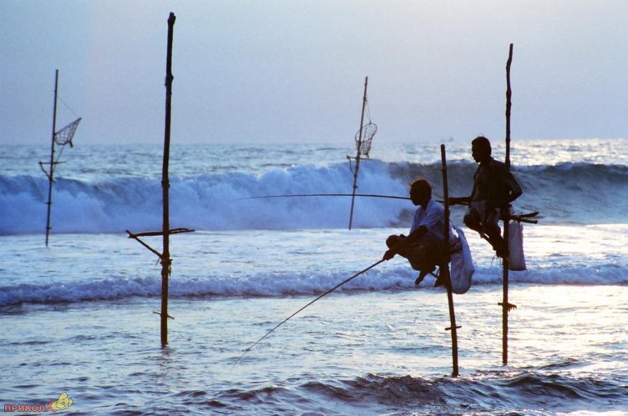 sri-lanka-fishing-08