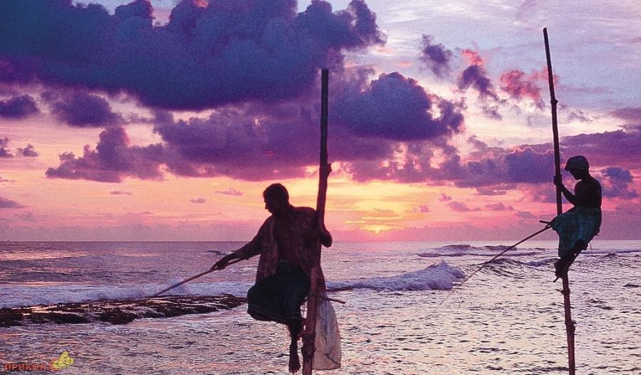 sri-lanka-fishing-09
