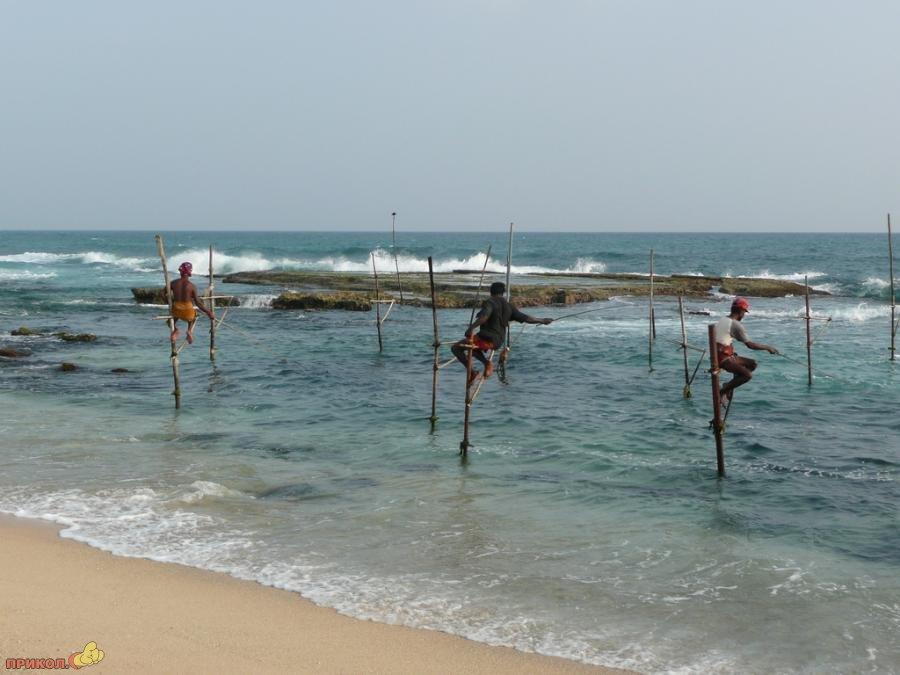 sri-lanka-fishing-10