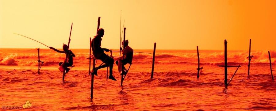 sri-lanka-fishing-13