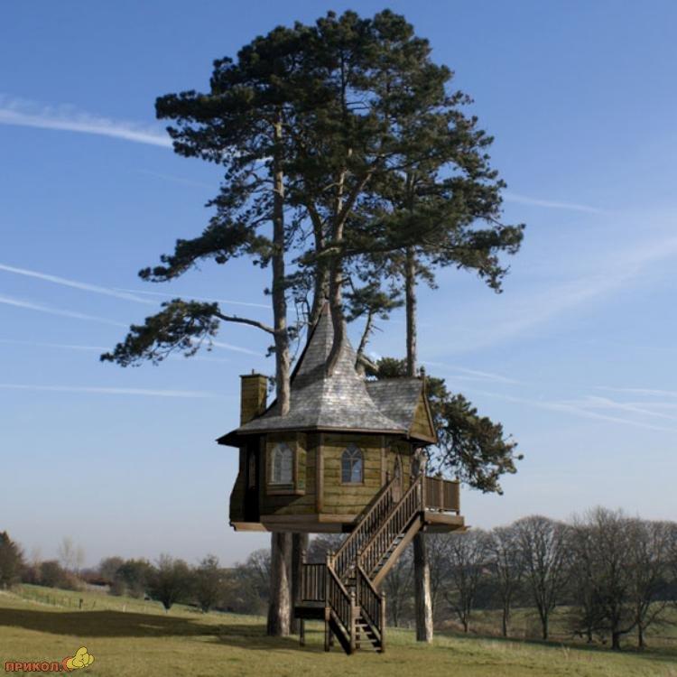 tree-house-01