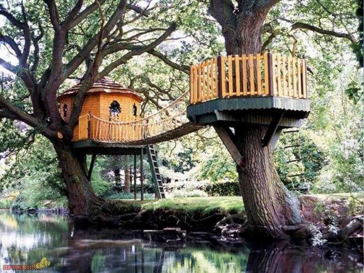 tree-house-06