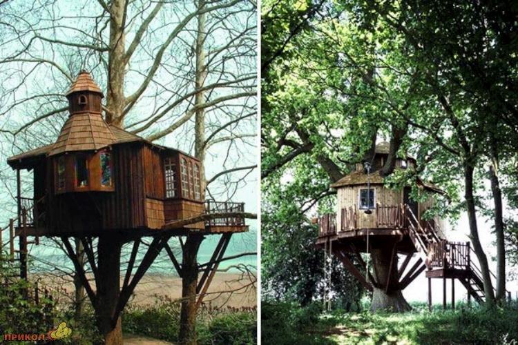 tree-house-08