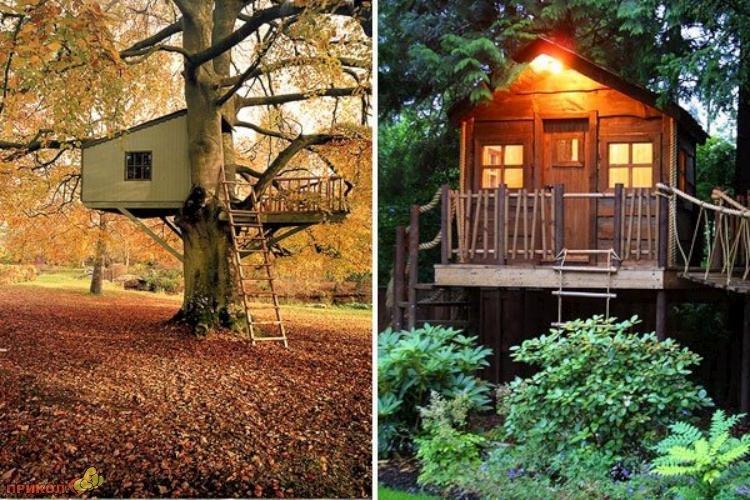 tree-house-09