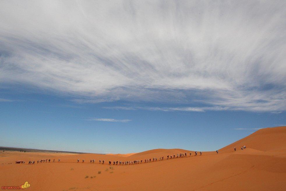 marathon-on-the-sands-13