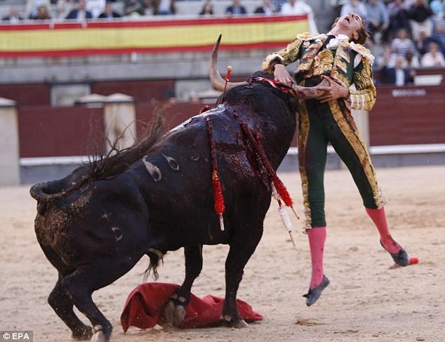 matador-fail-02
