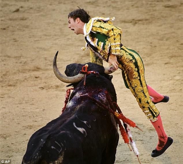 matador-fail-03