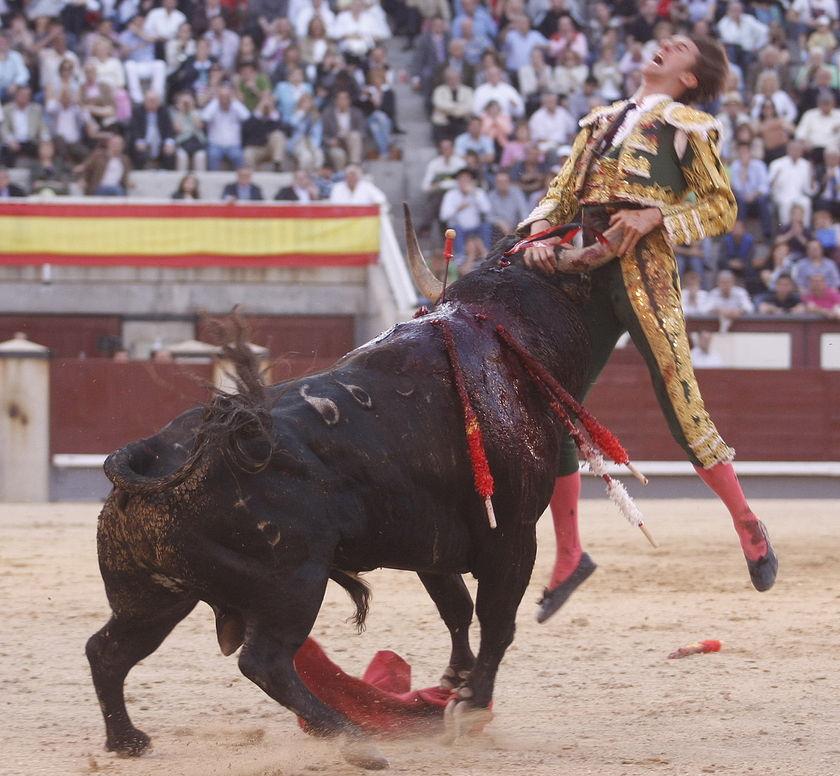 matador-fail-04