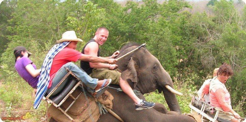 turisti-na-slone-01