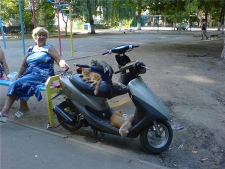 funny-russia008.jpg