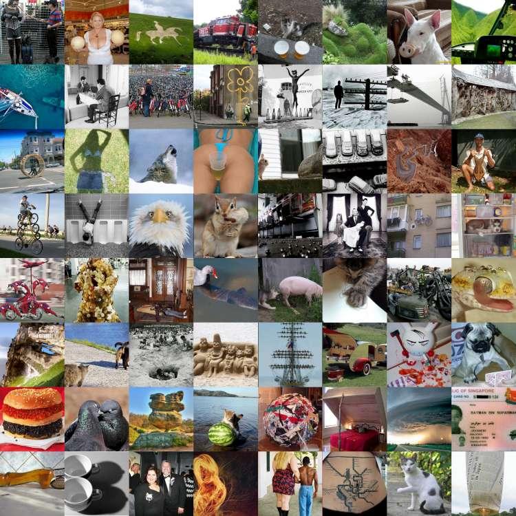 collage-750.jpg