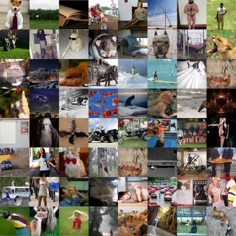 collage-7502.jpg
