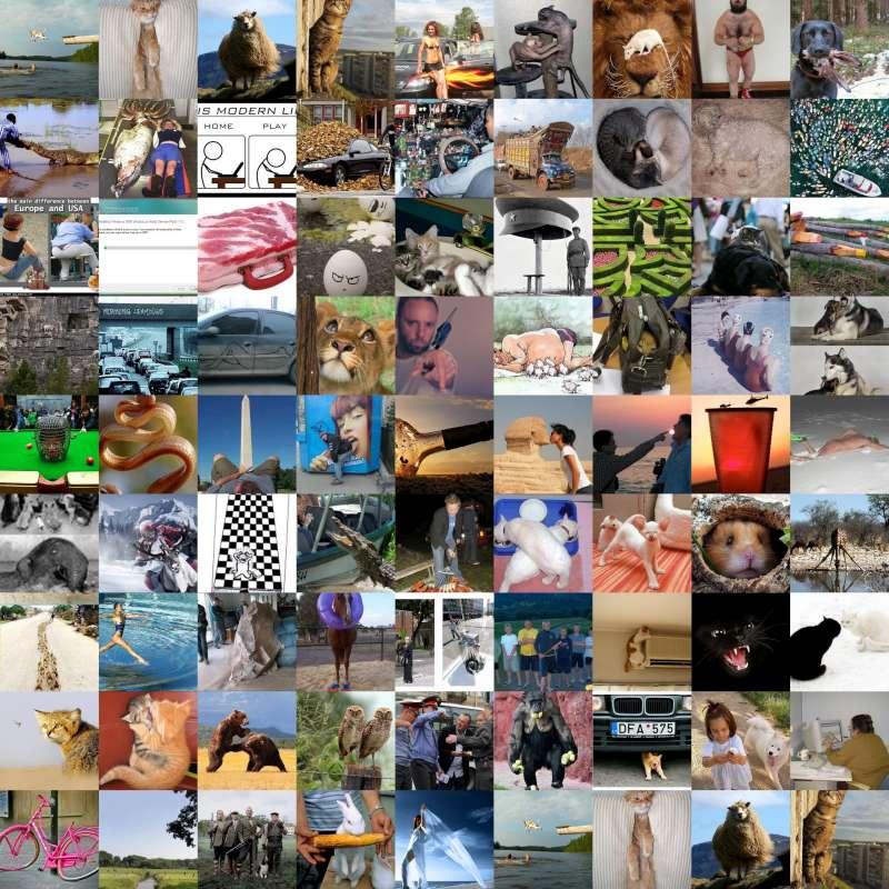 collage-8001.jpg