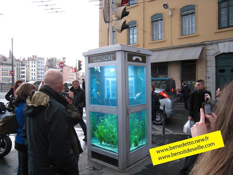 aquarium-phone-02