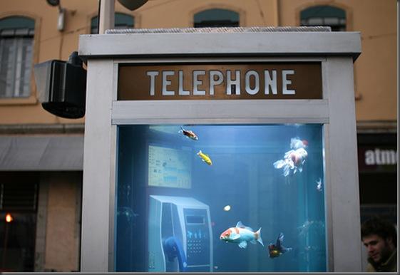 aquarium-phone-03