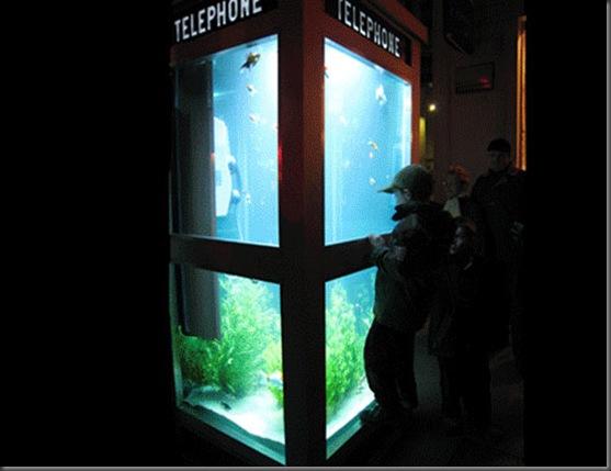 aquarium-phone-04