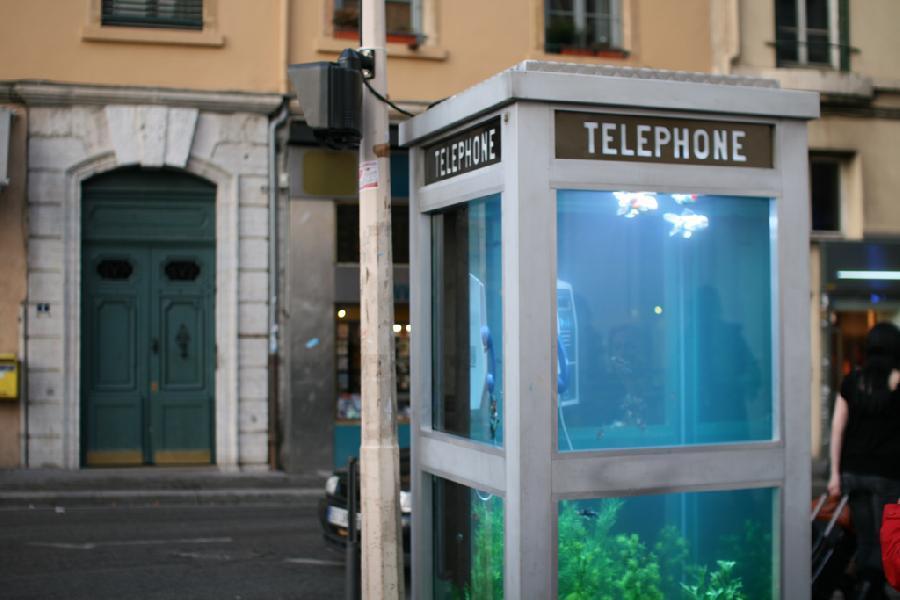 aquarium-phone-06