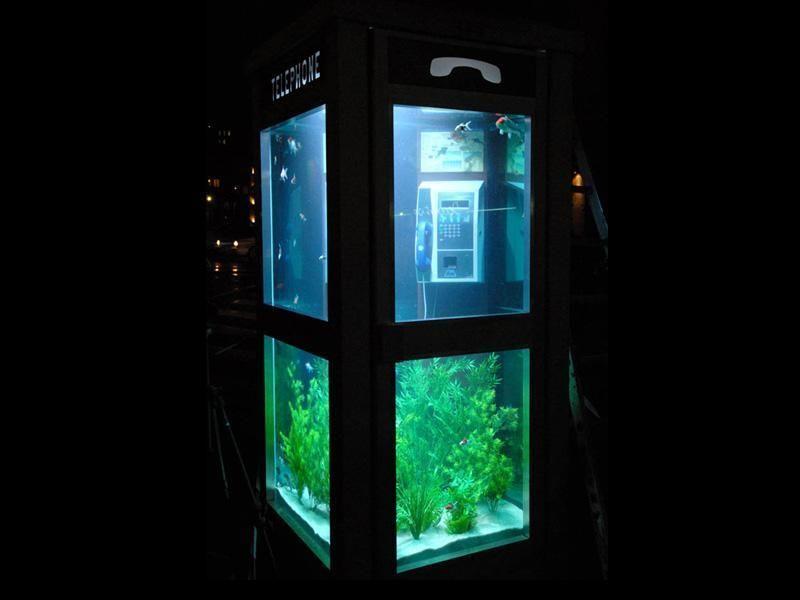 aquarium-phone-07