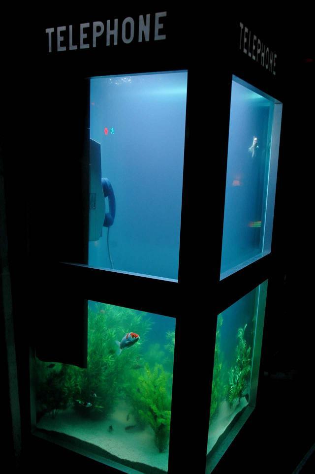aquarium-phone-10