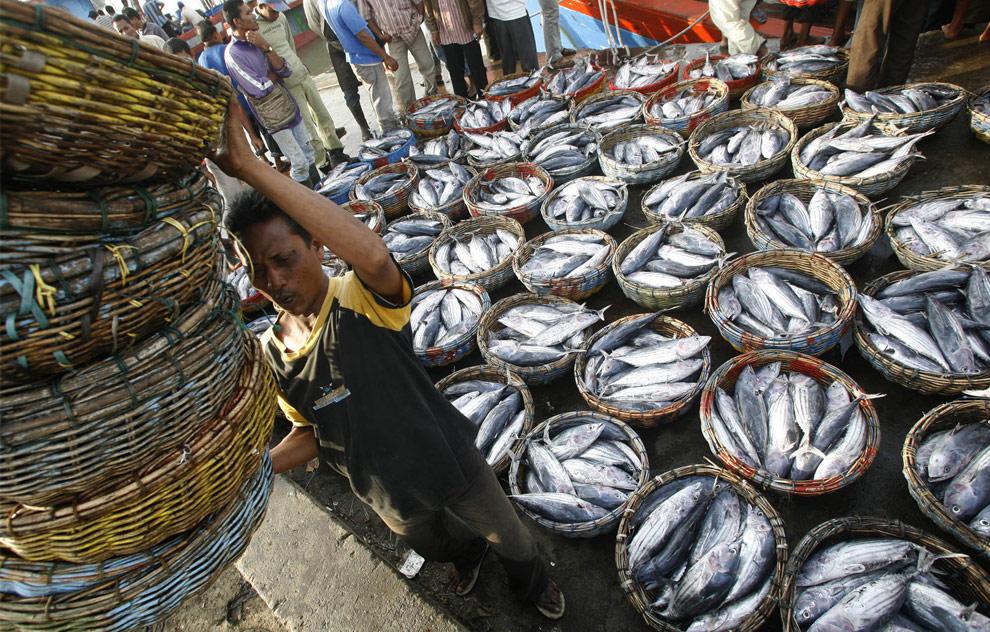 Рыбалка в юго-восточной азии