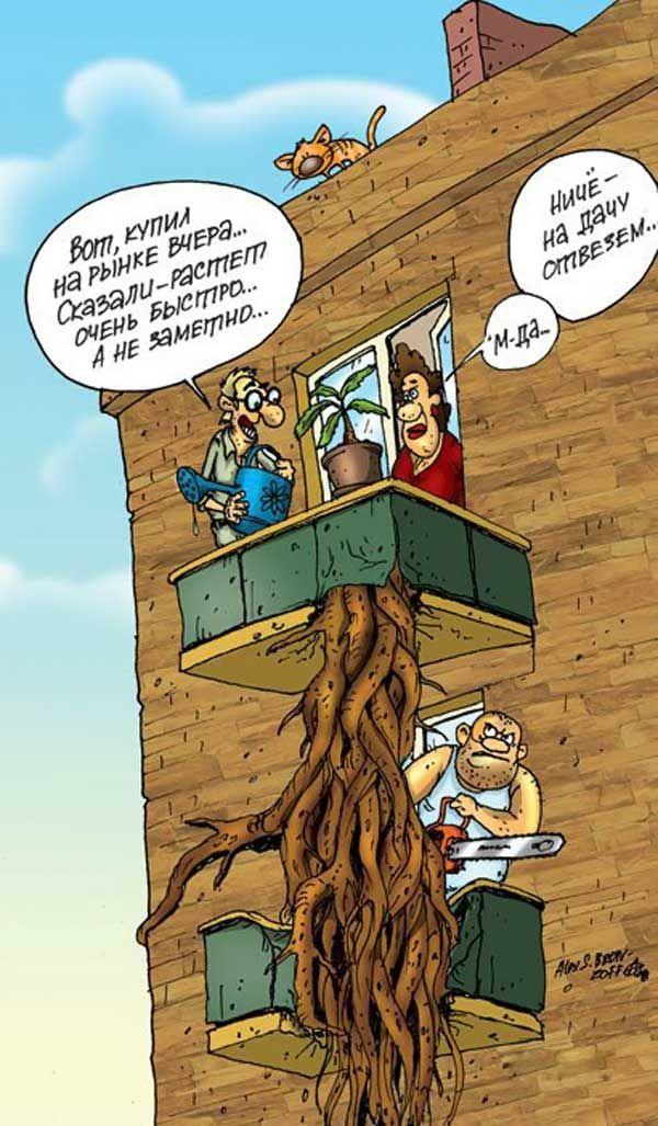 smeshnie-karikaturi-09