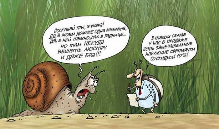 smeshnie-karikaturi-12