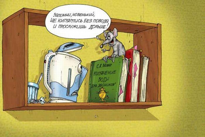 smeshnie-karikaturi-35