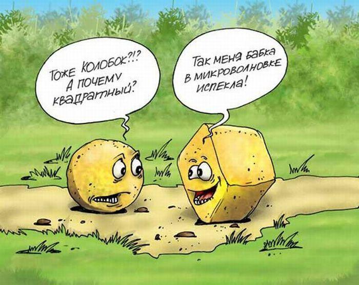 smeshnie-karikaturi-36