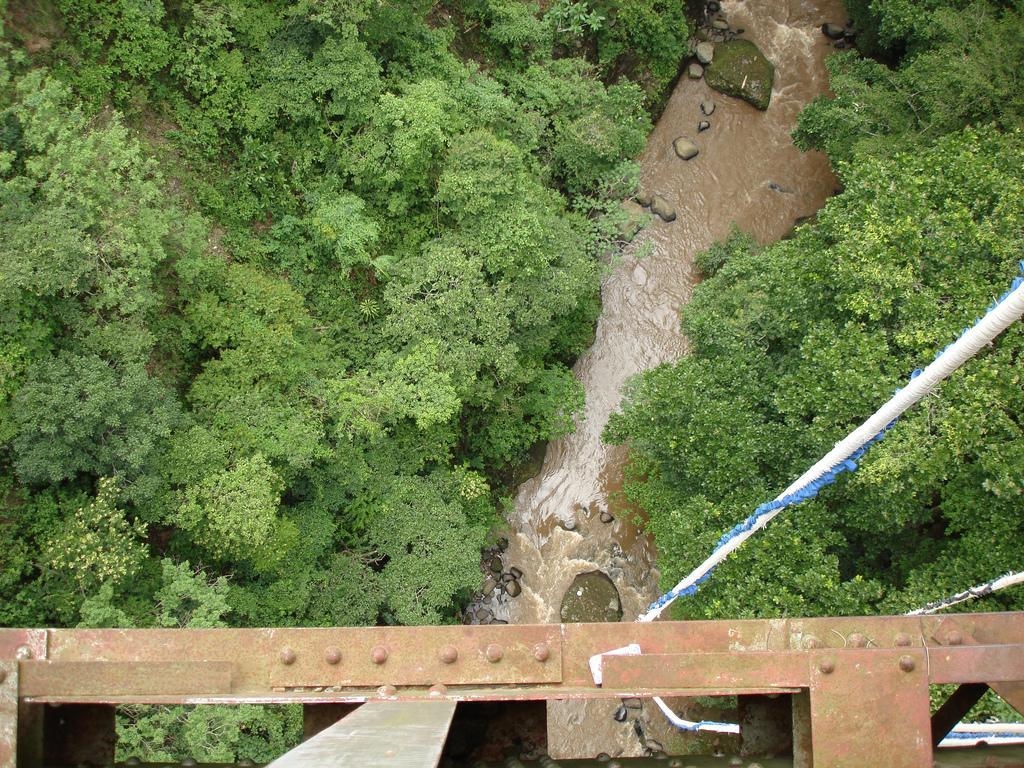 bungee-jump-13