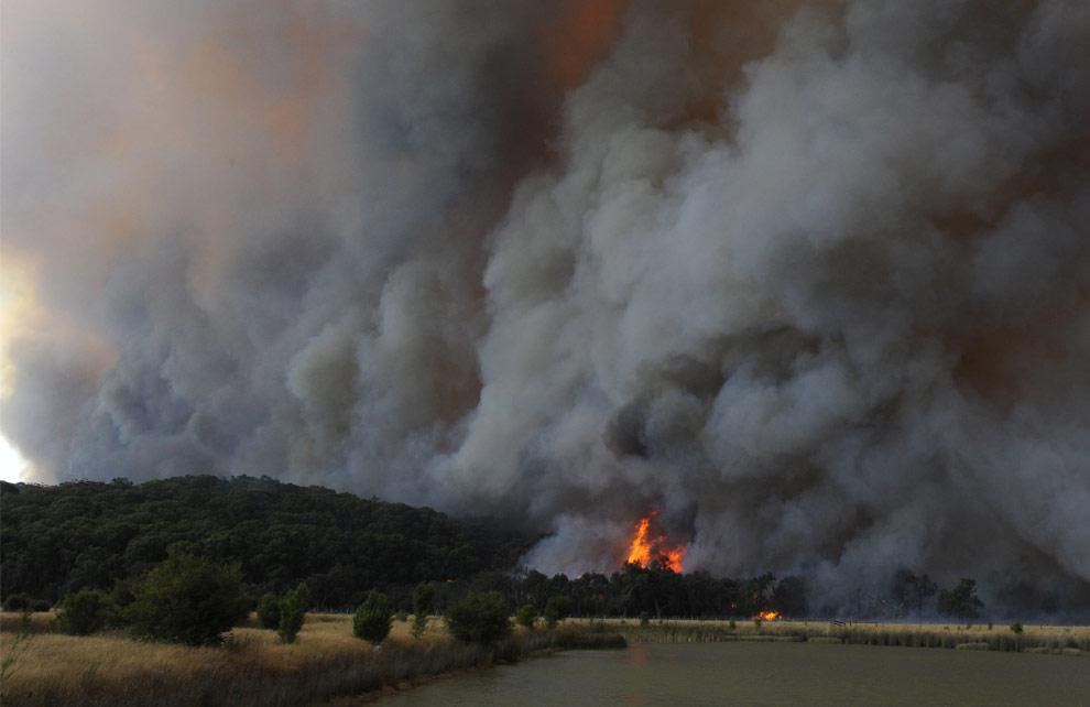 bushfires-in-victoria-australia-02