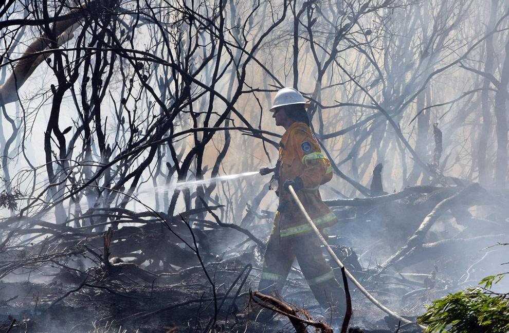 bushfires-in-victoria-australia-05