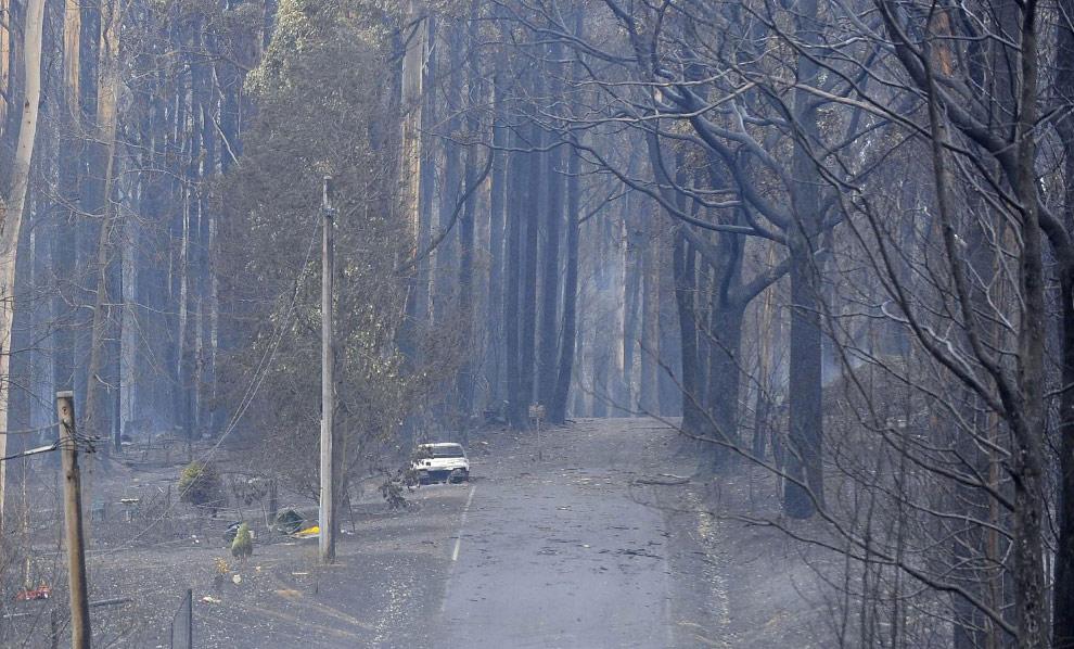 bushfires-in-victoria-australia-11