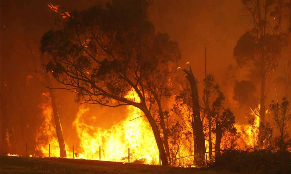 bushfires-in-victoria-australia-17