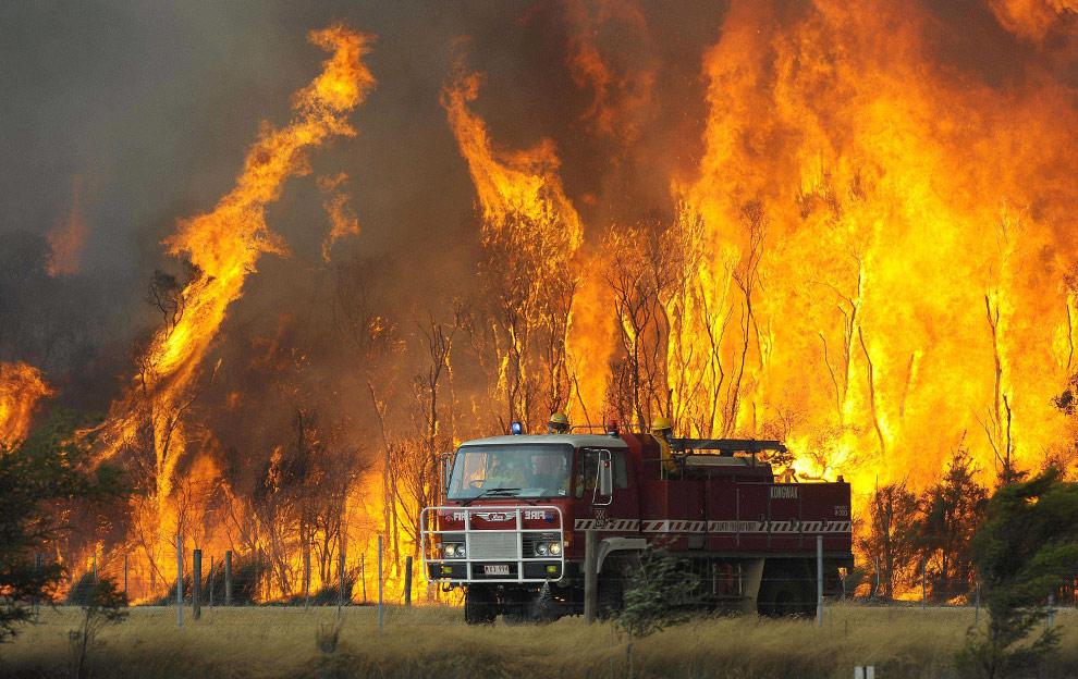 bushfires-in-victoria-australia-19