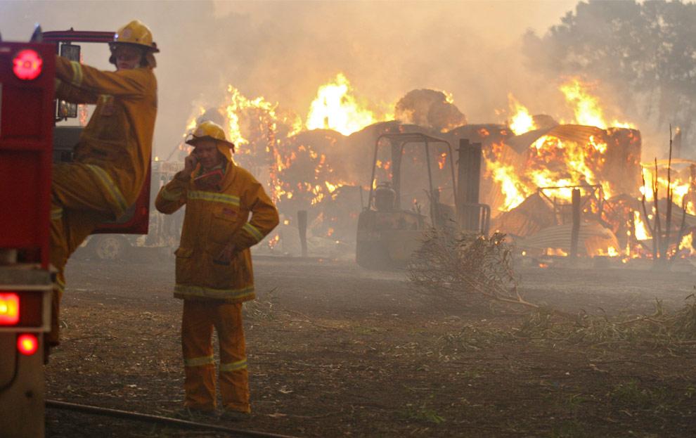 bushfires-in-victoria-australia-26