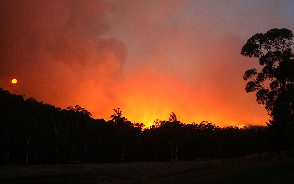 bushfires-in-victoria-australia-29