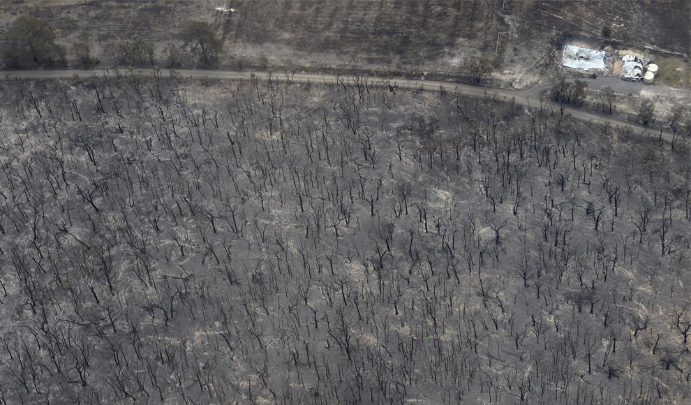 bushfires-in-victoria-australia-34