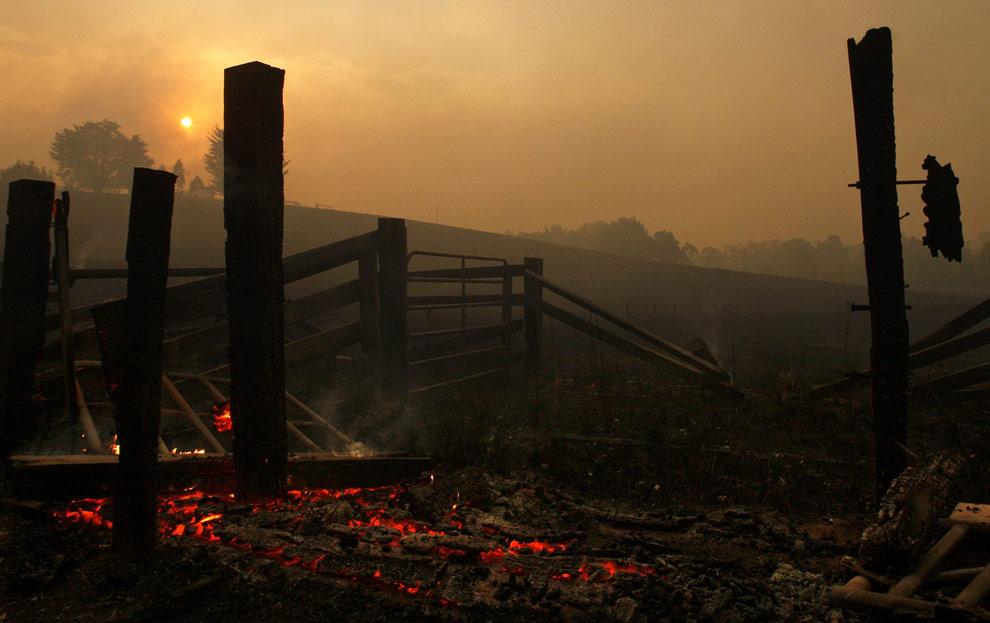 bushfires-in-victoria-australia-36