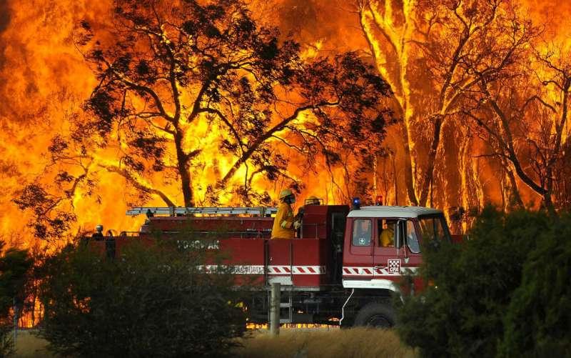 bushfires-in-victoria-australia-37